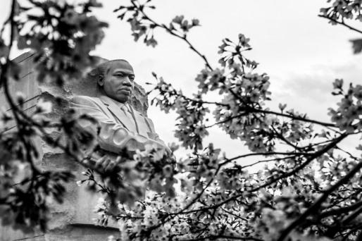 MLK, Washington D.C.